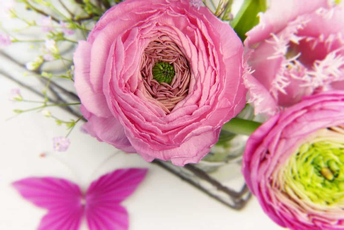 how to choose the right flowers for any occasion