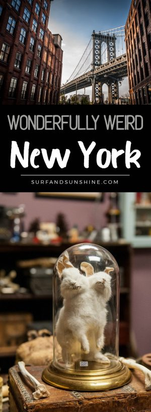 things to do and see in wonderfully weird new york custom