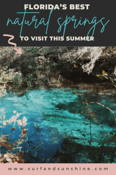 florida's best natural springs to visit this summer