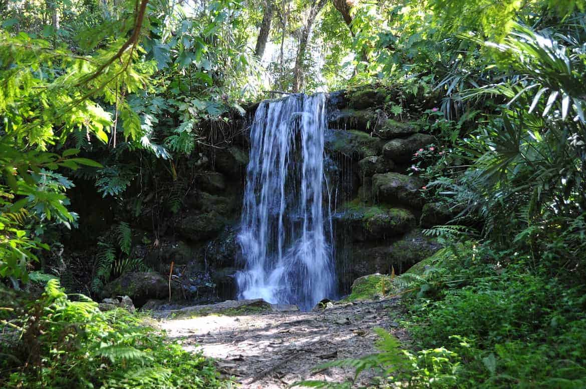 waterfall at Rainbow Springs State Park
