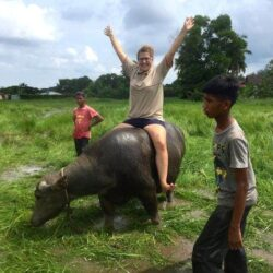 The time I rode a water buffalo in a rice paddy field of Malaysia