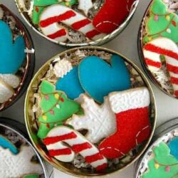 Best Christmas Cookie Recipes to Leave for Santa and his Crew