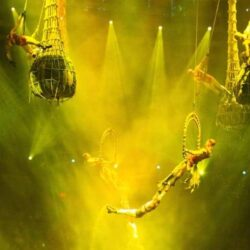 Two of The Most Exciting Shows in Vegas: Le Reve and ShowStoppers