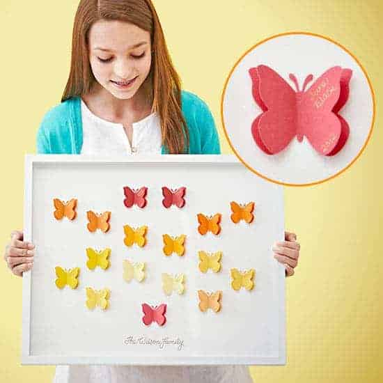 butterfly family tree
